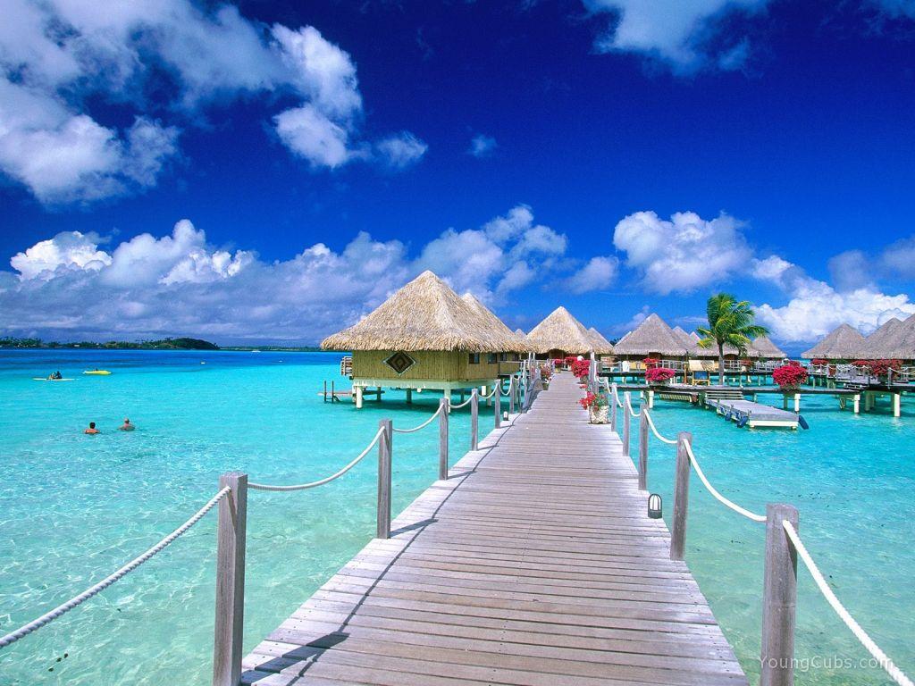Attractive Travel & Tourist Deals (174 of 705)